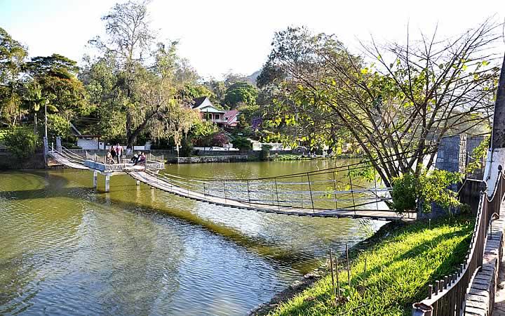 Ponte do Lago Javary - Miguel Pereira