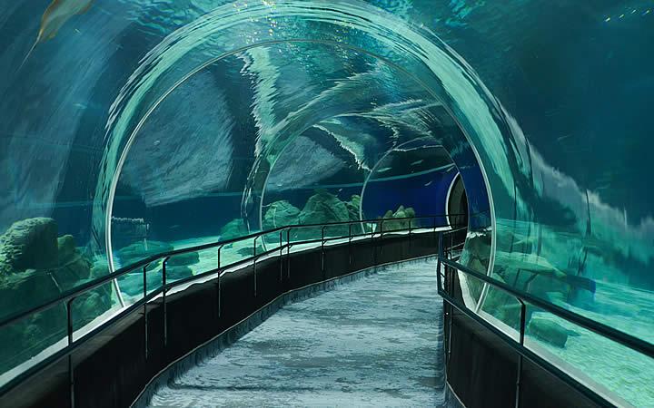 Corredor Aquario - VLT