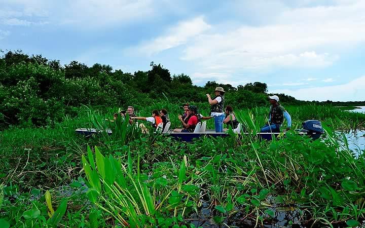 Passeio de Barco - Pantanal