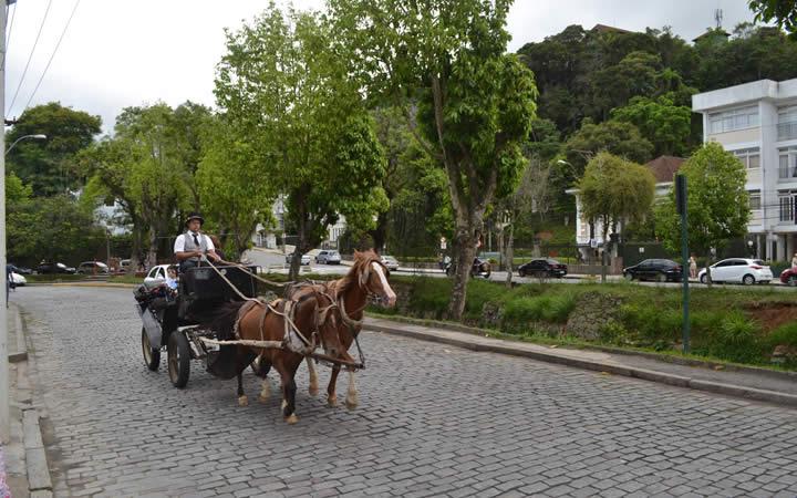 Passeio de Charrete em Petrópolis
