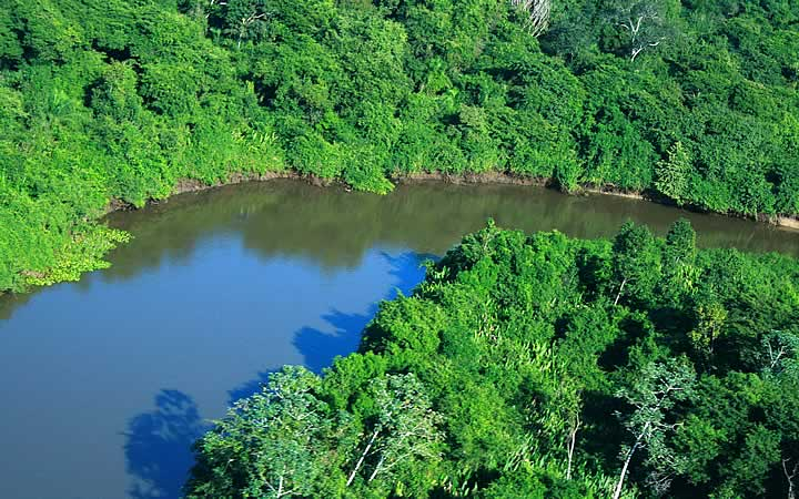 Rio Miranda - Pantanal