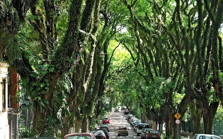 Rua Gonçalves de Carvalho em Porto Alegre