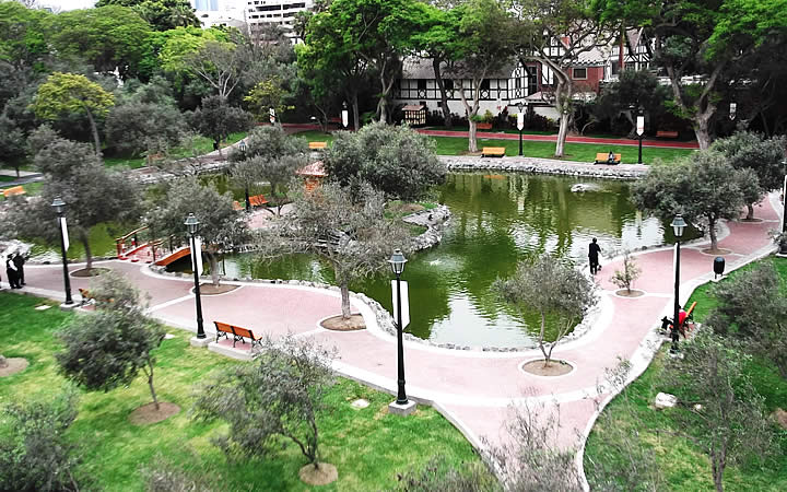 Bosque El Olivar - Lima