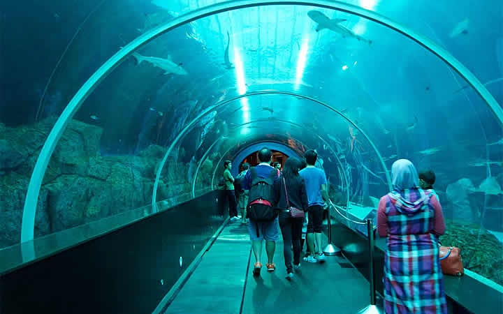 Aquário (Marine Life Park) em Singapura