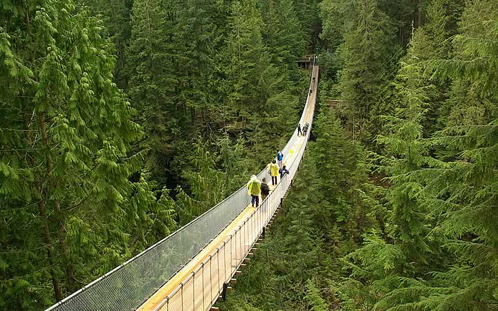 Capilano Suspension Bridge Park - Vancouver