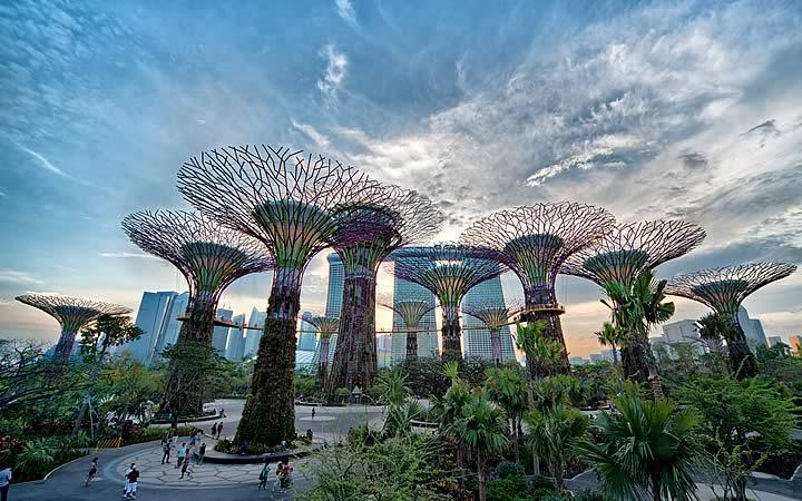 Jardim botânico - Singapura