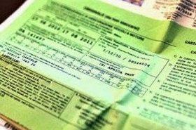 Carta Verde - O que é, Como tirar, Dúvidas