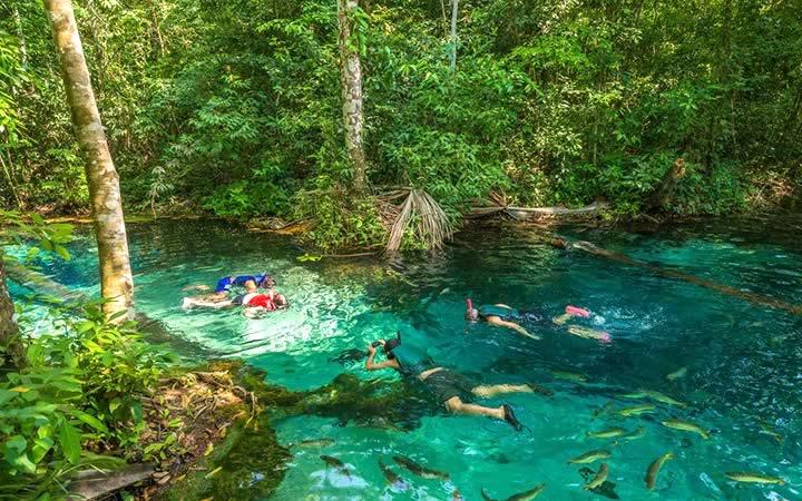 Mergulho nas águas cristalinas de Nobres - MT