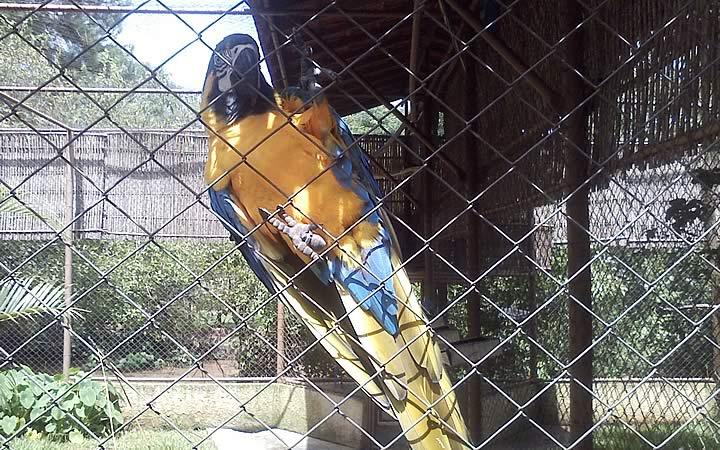 Parque Zoológico Eugênio Walter