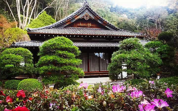 Recanto japonês - Poços de Caldas