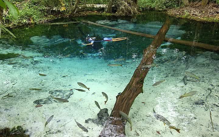 Reino Encantado Lagoa Azul - Aquário Encantado