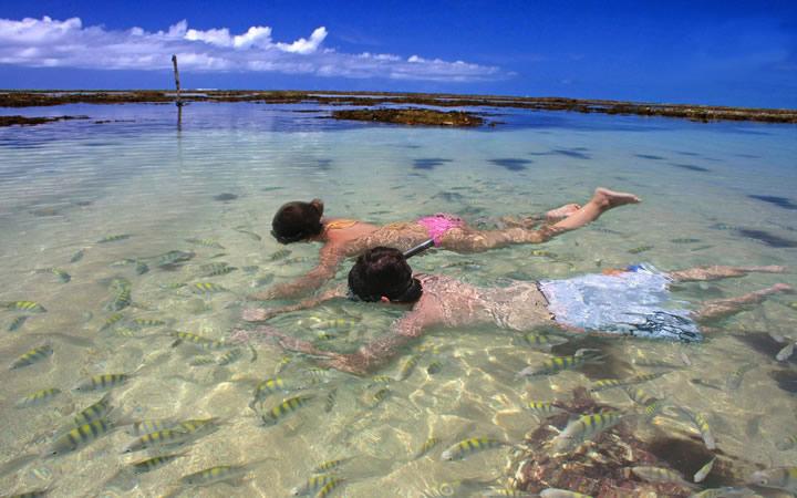 Vida marinha da Praia de Paripueira