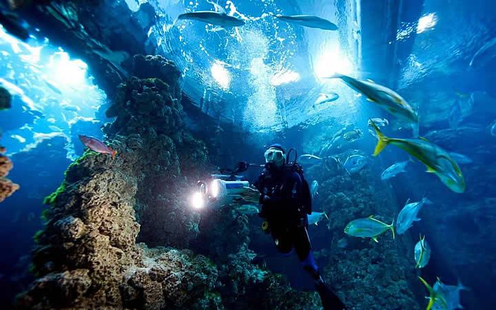 Aquário Oceanográfico em Mônaco