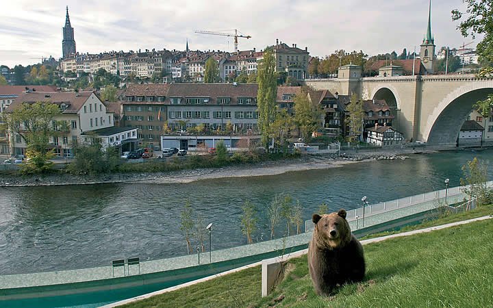 Parque dos Ursos em Berna