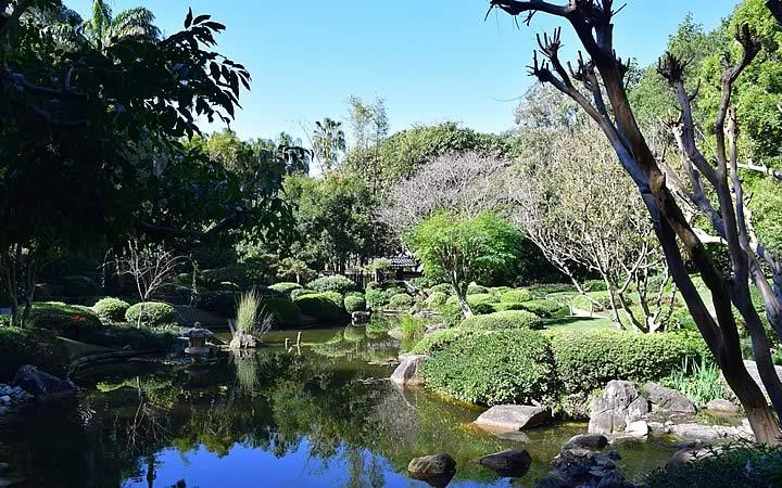 Jardim Botânico em Brisbane