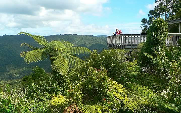Parque Regional de Waitakere Ranges