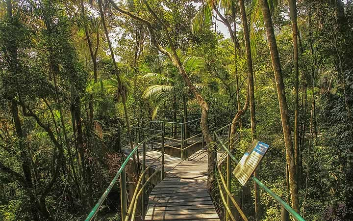 Trilha Teresópolis - trilha suspensa