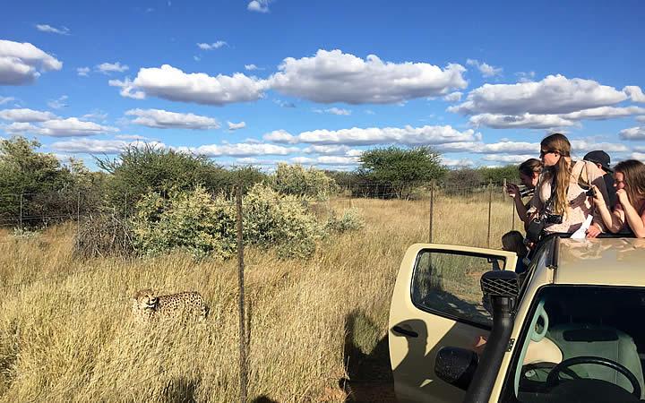 Pessoas na Namíbia fazendo roteiro selvagem