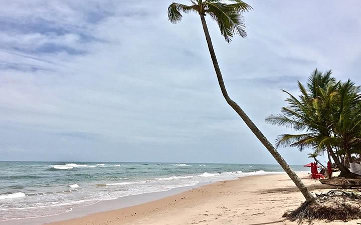 Praia de Algodões em Maraú