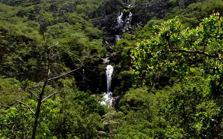 Parque do Cipó vegetação e cachoeira