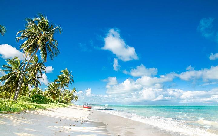 Praia do Patacho – São Miguel dos Milagres