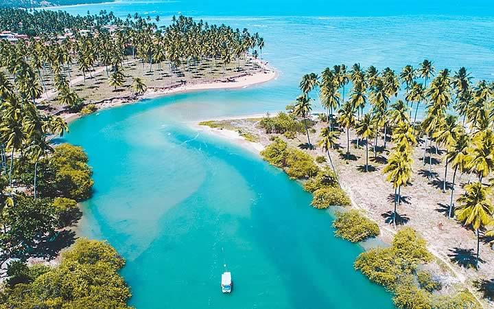 Barco navegando em rio cercado de coqueiros