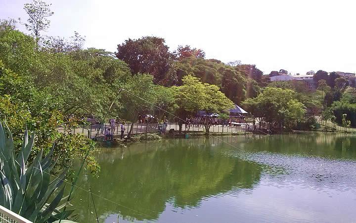 Lago central do Parque do Centenário em Varginha