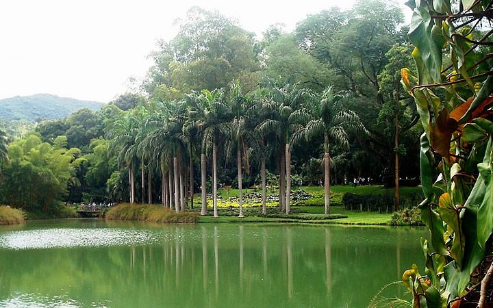 Lago do Instituto Inhotim em Brumadinho