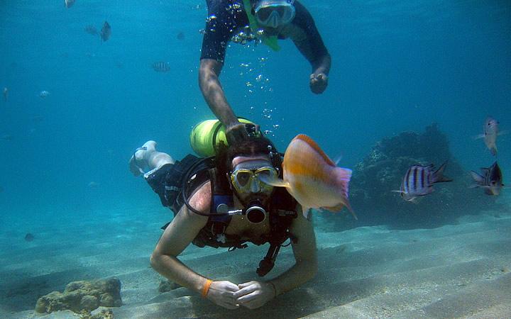 Mergulho com cilindro ou com Snorkel