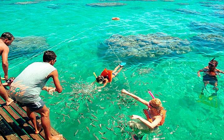Pessoas fazendo mergulho na Praia de Maracajaú