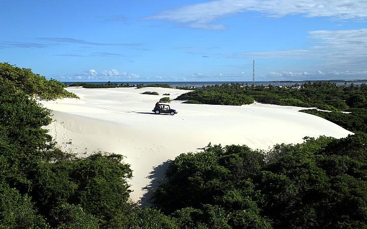 Praia de Mangue Seco - Passeio de Buggy