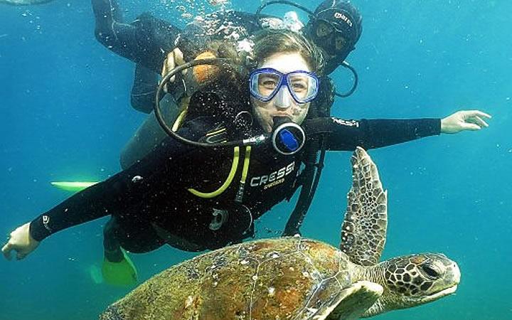 Mulher mergulhando ao lado de uma tartaruga em Cabo Frio