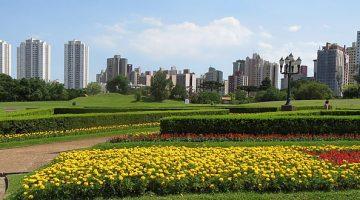 Vista do jardim botânico Curitiba