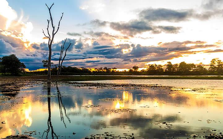 Paisagem no Pantanal em Mato Grosso