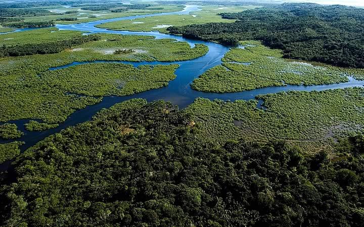 Reservas da Mata Atlântica do Sul e Sudeste