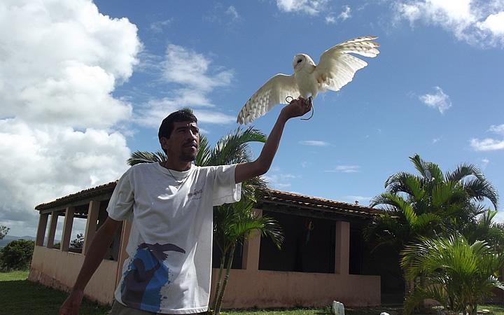 Home segurando um falcão no Parque dos Falcões