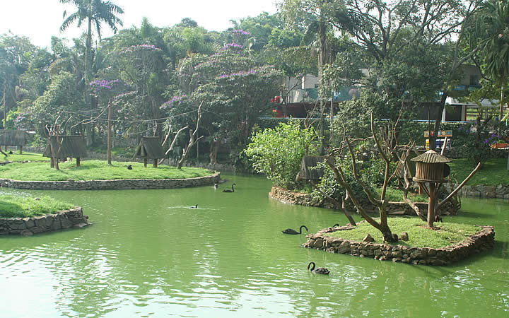 Lago do Zoológico