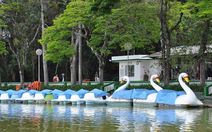 Pedalinhos no Parque das Águas