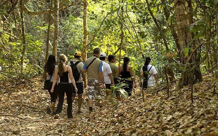Pessoas fazendo trilha