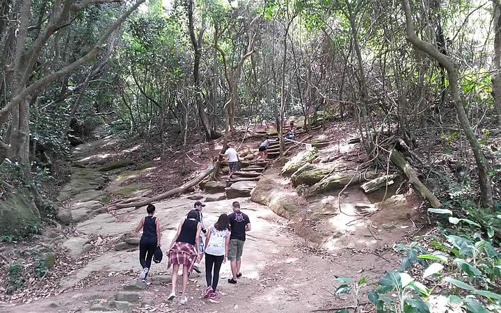 Pessoas dentro da mata subindo a Trilha Morro da Urca