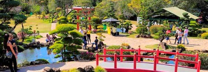 Parque Maeda
