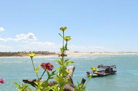 Barcos no mar em Tibau do Sul