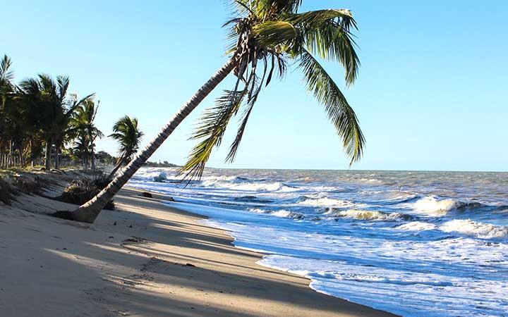 Orla da Praia de Alcobaça em Prado na Bahia - Ondas chegando na areia e árvores de coqueiro perto da praia