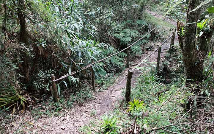 Trilha na Serra da Bocaina