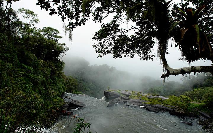Cachoeira e vegetação São José do Barreiro