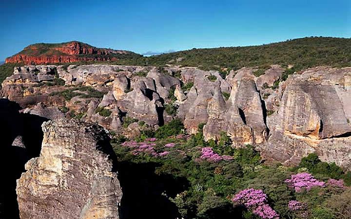 Montanhas e vegetação Serra das Confusões