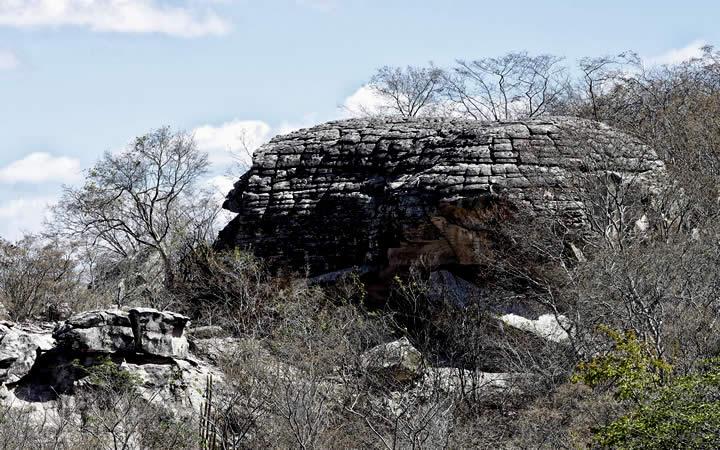Vegetação e rochas