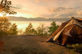 Barraca de acampamento e vegetação