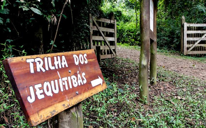 Parque Vassununga - Santa Rita do Passa Quatro SP