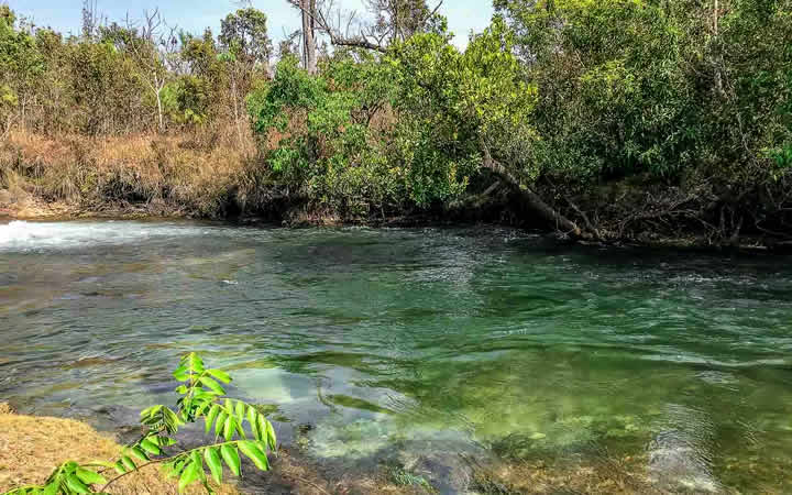 Rio de Águas Claras - Parque das Emas